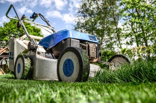מכסחות דשא